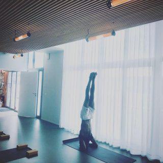 Notre salle est de nouveau ouverte ! Retrouvez vos cours et professeurs préférés dès maintenant 🧘🏼♀️🧘🏽🤸 . . On ne rate pas le premier cours en salle de ASHTANGA YOGA avec @loganadhen depuis 7 mois le 31 mai à 19h et ce soir encore en ligne. . . #yogapantin #ashtangayoga #ashtanga #yogaparis #yogapractice #wellness #pantinisbeautiful #pantinmaville